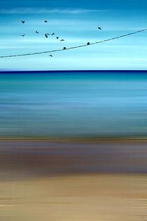 CRETAN SEA & BIRDS II von Pia Schneider