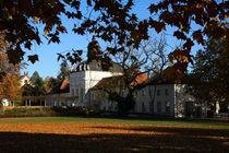 Schloss Köpenick by foto-bar