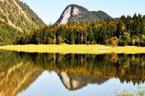 Gespiegelte Berge von Brigitte Stolle