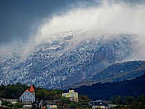 Snowstorm Descending  von Rick Todaro