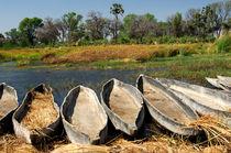 Mokoro-Einbäume, Okavango, Botswana by gfc-collection