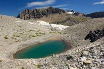 Bergsee, Berner Alpen, Schweiz by gfc-collection