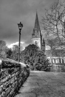 Llandaff Cathedral von Dan Davidson