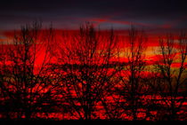 red IVX von joespics