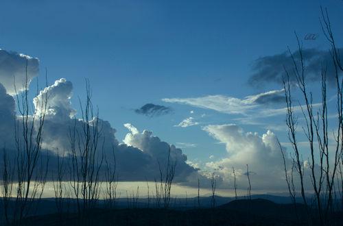 December-sky