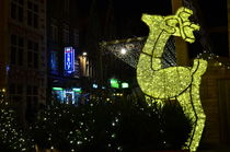 Christmas in Ghent, Belgium by 7horses
