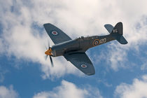 Hawker Sea Fury by Steve H Clark Photography
