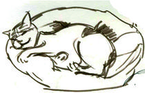 sleeping lucky cat by Cornelia Papendick