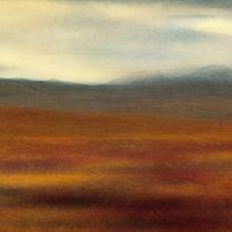 Tundra Impression Part 2 von Priska  Wettstein