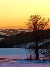 'Winterlicher Sonnenuntergang' von Patrick Jobst