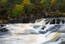 The Affric River, Glen Affric by Louise Heusinkveld