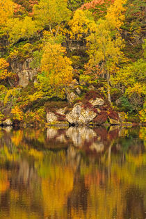 Glen Strathfarrar in the Scottish Highlands by Louise Heusinkveld