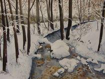 Mühlekanal von Sabine Sigrist