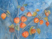 Physalis, oder die Farben des Herbstes von Sabine Sigrist