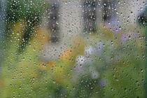 rain drops by mark severn