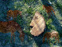 Traum des Steckenpferdes | Hobby Horse's Dream by artistdesign