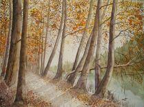 Herbst an der kleinen Emme von Sabine Sigrist
