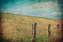 Landscape von AD DESIGN Photo + PhotoArt