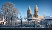 Viborg Cathedral von Paul Davis