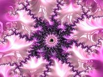 Fraktal für Mädchen rosa pink violett purpur weiß von Matthias Hauser