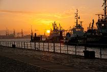 Der Hafen erwacht von Angela Dieckmann