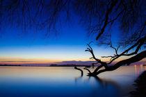 Nach dem Sonnenuntergang an der Elbe by Dennis Stracke