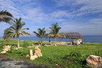 Cuba, Varadero, Beach Barbeque site von Michael Neuneier