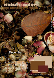 nature colors calendar december 2014 by ggoulias