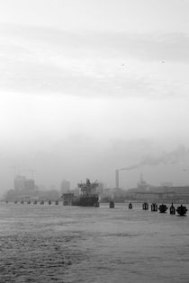 Parkplatz für Frachter auf der Elbe von Michael  Lang
