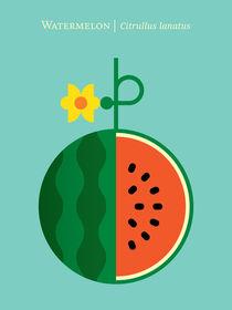Fruit-watermelon