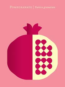 Fruit-pomegranate