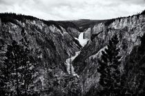 Lower Falls of the Yellowstone River von Ken Dvorak