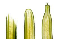Gurken scheiben - Cucumber slices von rclassenfotostock