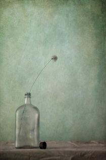 just an old bottle and its cap/nur eine alte Flasche und ihr Deckel von Priska  Wettstein