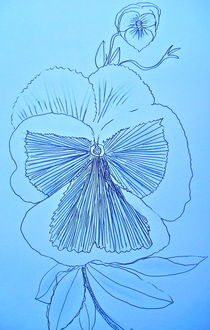 Pansy in Blue by Christine Chase Cooper