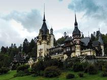 Peles Castle by Florentina Necunoscutu de Carvalho