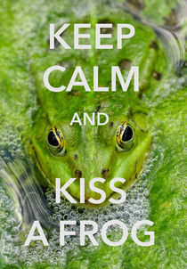 Keep calm and kiss a frog funny quote von Matthias Hauser