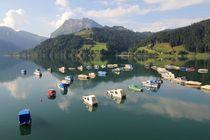 Sommerfrische am See von Bruno Schmidiger