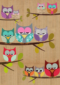 Cute Owls on wooden background by Claudia Schoen