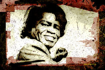 James Brown by Stephen Lawrence Mitchell