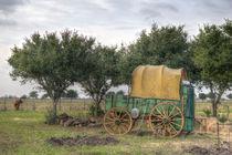 Old Farm Chariot von agrofilms