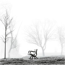 Ashbridges Bay Bench Toronto Canada by Brian Carson