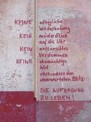 Keine-artf-100x75
