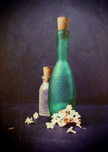 Still Life - Glass Bottles with Petals of a Winter Blossom von Sybille Sterk