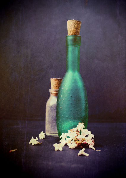 Stilllife-bottleswithpetals-c-sybillesterk