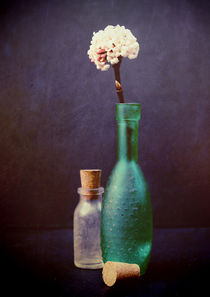 Still Life - Glass Bottles with Winter Blossom by Sybille Sterk