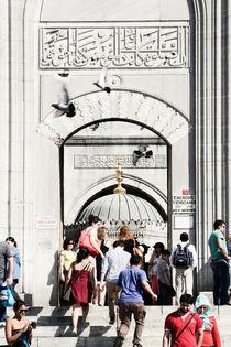 Gate by Miroslava Andric