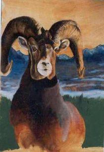Bighorn Ram by John  Tukey