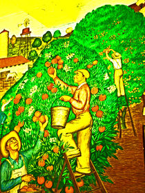 Orange Harvest Time von Joseph Coulombe