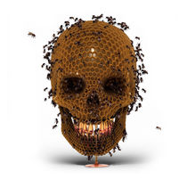 Skull Hive by luke-dwyer-artist